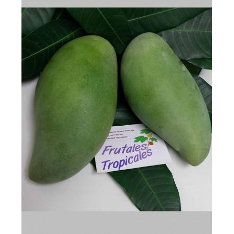 Mango Okrong