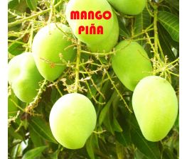 Mango Pineapple Pleasure , manga abacaxi