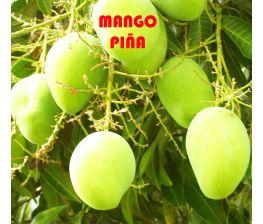 Mango Pineapple Pleasure, mangue pina