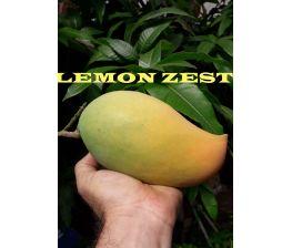 Mango Lemon Zest