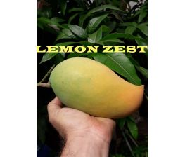 Mangue Lemon Zest