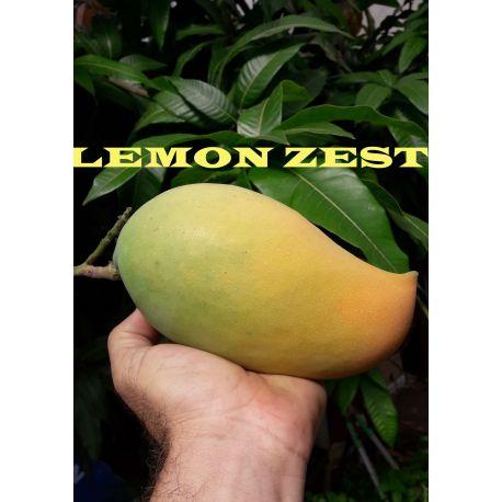 Manga Lemon Zest