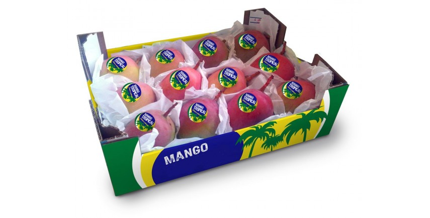 MANGOES COMMERCIAL VARIETIES